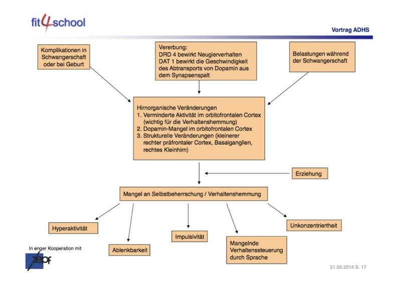 Informationsabend zum Thema ADHS : Was ist das? Was kann man tun?