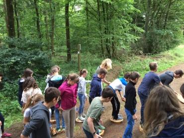 Waldjugendspiele 2015 – für einen Tag gemeinsam im Wald