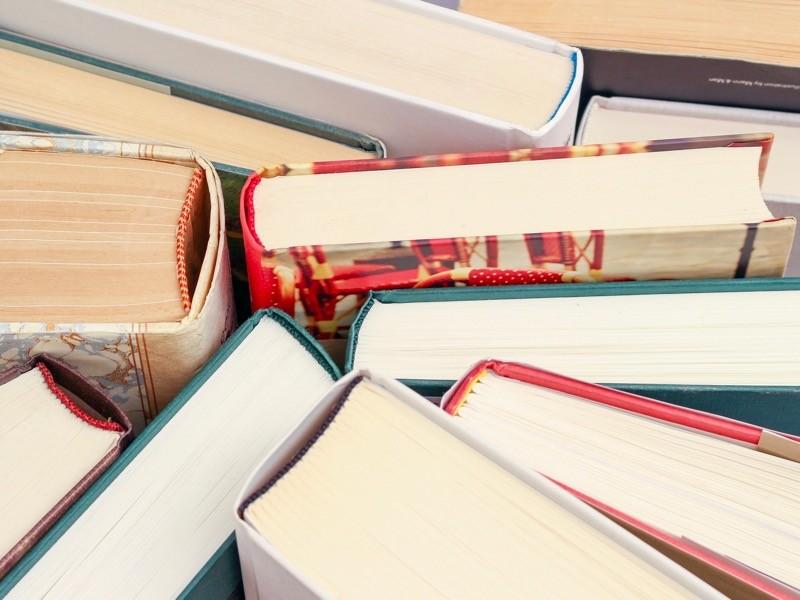 Lesen – aber was?