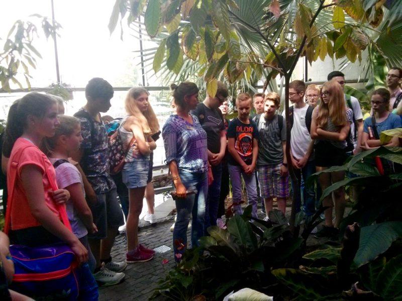 Ausflüge: nah und fern – Wandertag an unserer Schule