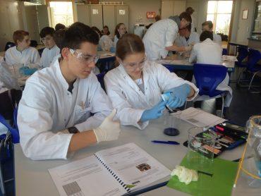 """Exkursion der Klasse 10c ins Schülerlabor """"BioGeoLab"""" der Universität Trier"""