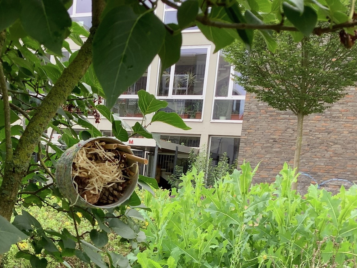 Insektenhotels-4.jpeg